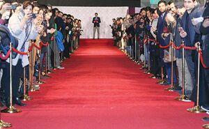فرشهای قرمز سینما و موسیقی جمع شدهاند