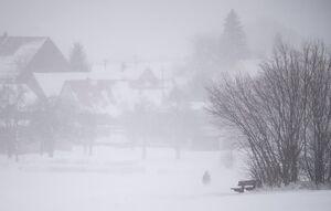 عکس/ موج بارش برف به آلمان رسید