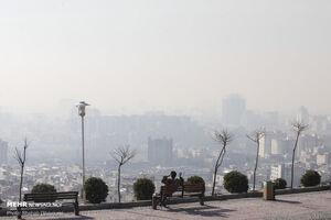 افزایش سکته در هوای آلوده/ریه هایی که سرطانی می شوند