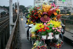 گل فروشی با دوچرخه