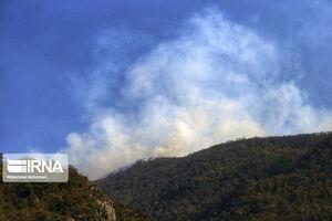 جنگل رامسر دچار آتش سوزی شد