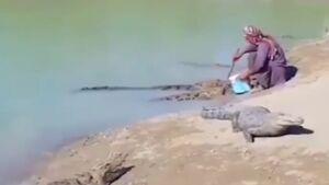 فیلم/ زندگی مسالمتآمیز مرد بلوچ با تمساحها!