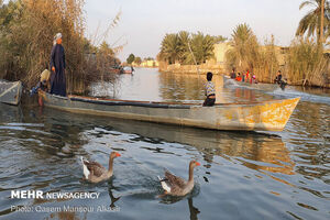 عکس/ روستای صراخیه خوزستان؛ ونیز ایران