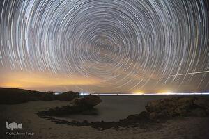 عکس/ زیباییهای ساحل خلیج فارس