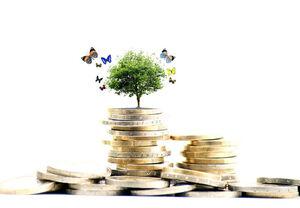 صندوقهای سرمایه گذاری کشاورزی مجوز گرفتند