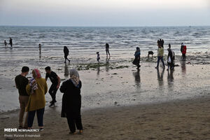 عکس/ هجوم مسافران زمستانی به هرمزگان