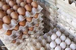 تخممرغهای فلهای کاملاً بهداشتی هستند
