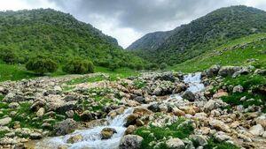 عکس/ طبیعت زیبای چشمه نگل سیروان