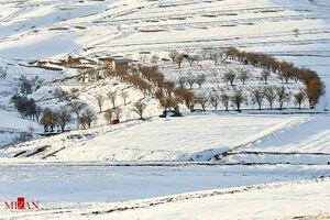 عکس/ بارش برف در خراسان شمالی
