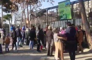 فیلم/ رعایت نکردن شیوه نامههای بهداشتی در باغ وحش ارم