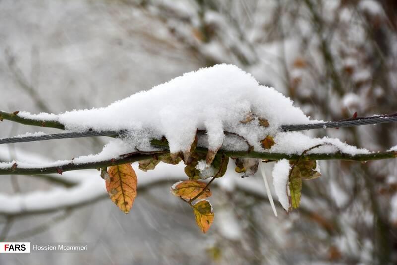 بارش برف شدید در بجنورد