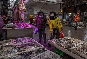 عکس/ گشتی در بازارهای ووهان چین