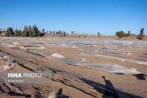 عکس/ خسارات طوفان در جنوب استان کرمان