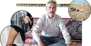 روایت عجیب مارگزیدهترین مرد ایران!