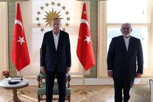 ظریف با اردوغان دیدار کرد