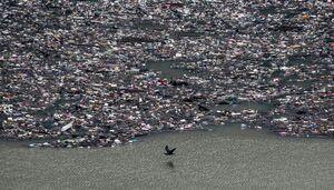 عکس/ زبالههای شناور در رودخانه