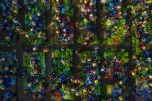 تصویر هوایی زیبا از بازار ویتنام