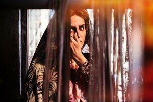 «ابلق» و «بی همه چیز» در صدر آرای مردمی جشنواره فجر