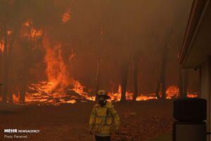 تخریب ده ها خانه در پی آتش سوزی در استرالیا