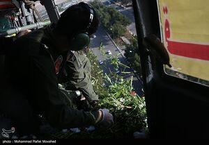عکس/ گلباران گلزارهای شهدای قم
