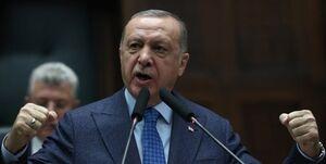 اردوغان بار دیگر ماکرون را مورد انتقاد قرار داد