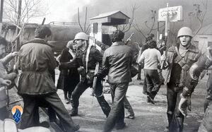 اولین نیروی نظامی که مقابل رژیم پهلوی ایستاد که بود؟