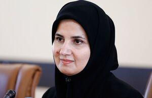 پیشنهادات جدید دولت به مجمع درباره FATF