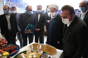 افتتاح 372 طرح گلخانهای با حضور روحانی