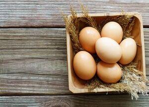 قیمت تخم مرغ پوسته قهوهای چقدر است؟