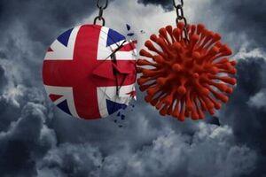 عکس/ همهچیز درباره ویروس جهشیافته انگلیسی