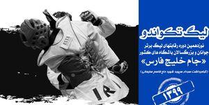 اعلام تاریخ برگزاری لیگ برتر تکواندو