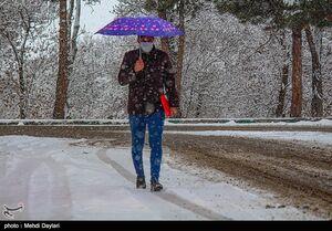 هواشناسی ایران ۹۹/۱۱/۲۷|آغاز بارش برف و باران در ۱۱ استان از فردا/ هشدار وزش باد شدید و کاهش دما