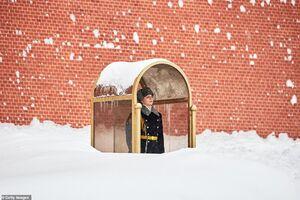 تصویری جالب از بارش برف در مسکو