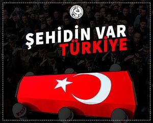 بیانیه عجیب وزارت خارجه آمریکا درباره سربازان کشته شده ارتش ترکیه / وقتی یانکیها اعضای MIT و نظامیان ترکیه را شهروند خطاب میکنند +تصاویر