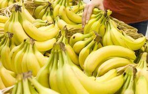 واردات موز به شرط صادرات سیب