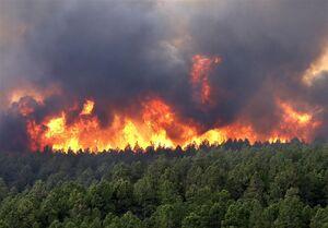 علت آتشسوزی جنگل نوشهر مشخص نیست