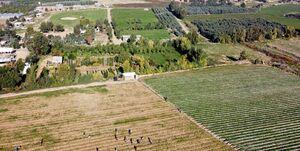 کشاورزان غزه