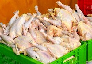 التهاب بازار مرغ به پایان میرسد/نرخ هر کیلو مرغ ۲۵ هزار تومان