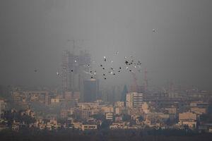 تهرانیها در بهمن چند روز هوای آلوده تنفس کردند؟