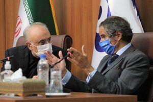 فیلم/ دیدار مدیرکل آژانس بین المللی انرژی اتمی با صالحی