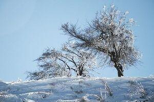 پیشبینی ماندگاری هوای سرد در کشور