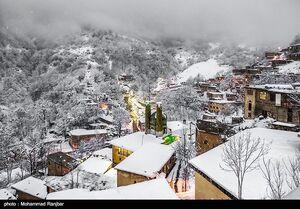عکس/ بارش برف در ماسوله