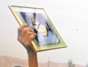 عکس/ پیداترین «گمشده»