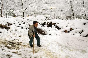 عکس/ روستای« تابستان نشین» املش در برف