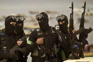 ابراز نگرانی کارشناس صهیونیست از عملیات دریایی حماس
