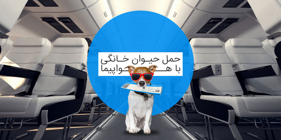 حمل حیوانات با هواپیما