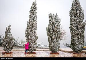بارش برف و باران ۶ روزه در ۲۲ استان