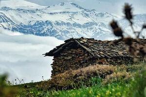 عکس/ بهار و زمستان در یک قاب
