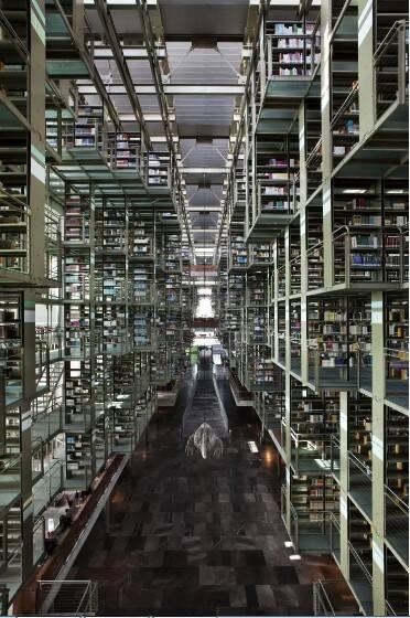 از کتابخانه شتری تا کتابخوانی داخل بشقاب پرنده + عکس