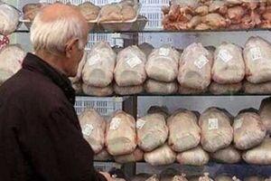 قیمت مرغ همچنان به سقف چسبیده و قول مسؤولان هم عملی نمیشود - کراپشده